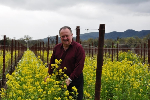 Lou in the Spring Vineyard
