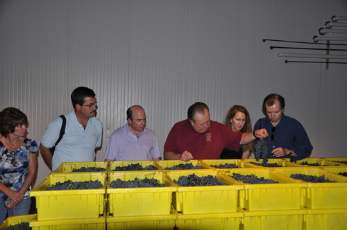 Tour during 2011 Harvest
