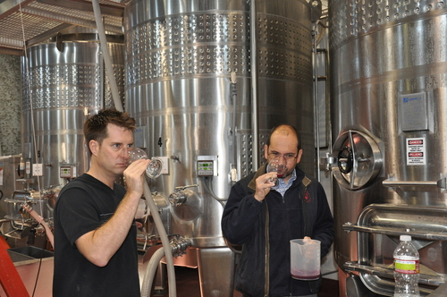 Louis and Denis Tasting the Tanks after Harvest
